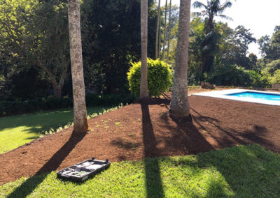 instant lawn installation